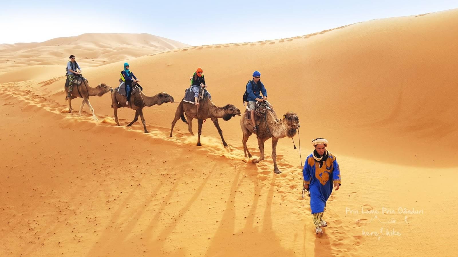Morocco Trips Agency merzouga